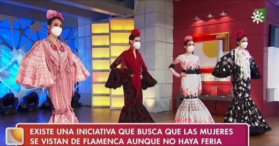 flamencas canal sur